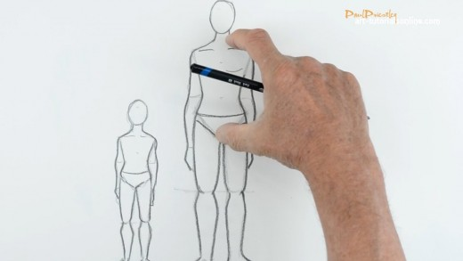 draw a figure in proportion
