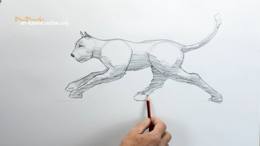 How to draw a cat running