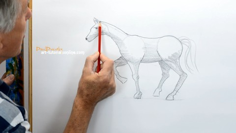 How to draw a horse simply