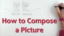 Compose a picture