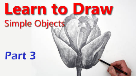 How to draw a Tulip